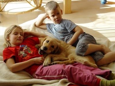 Kinder mit Hund pixelio Heike Berse